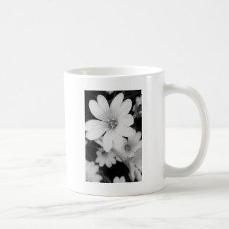 Schwarzweiss-Blume Kaffeetasse