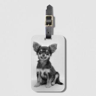 Schwarzweiss-Chihuahua-Welpen-Foto Gepäckanhänger