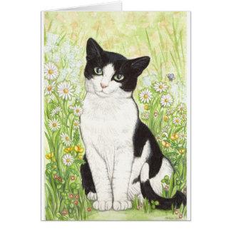 Schwarzweiss-Katze mit Gänseblümchen Karte