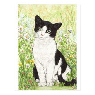 Schwarzweiss-Katze mit Gänseblümchen Postkarte