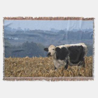 Schwarzweiss-Kuh lässt auf dem frisch gepflogenen Decke