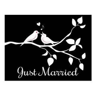 Schwarzweiss-Lovebirds-gerade verheiratete Postkarte