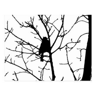 Schwarzweiss-Silhouette von Chickadee in einem Postkarte