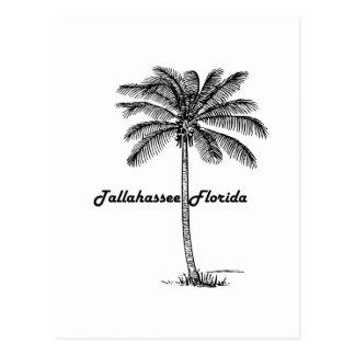 Schwarzweiss-Tallahassee- u. Palmenentwurf Postkarte