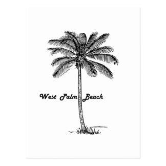 Schwarzweiss-West- Palm Beach u. Palmenentwurf Postkarte