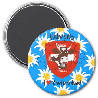Schweiz Suisse Svizzera Svizra Switzerland Magnet