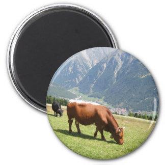 Schweizer Kuh Runder Magnet 5,7 Cm