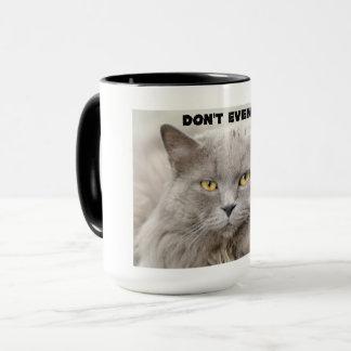 Schwermütige Katze mit einem strengen Vorschlag. Tasse