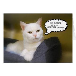 Schwester-weiße Katzen-Geburtstags-Spaß-Karte Grußkarte