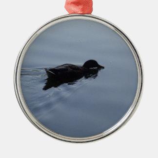 Schwimmen-Ente im See, Natur-Vogel-Tier-Blau Silbernes Ornament