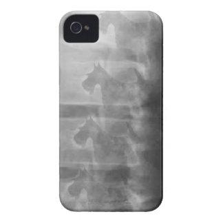 Scottiehundesyndrom iPhone 4 Case-Mate Hülle