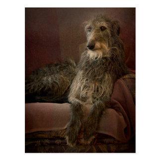 Scottish deerhound man hat Sofa Postkarte