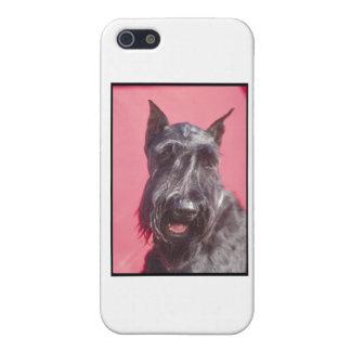 Scottish Terrier iPhone 5 Hüllen
