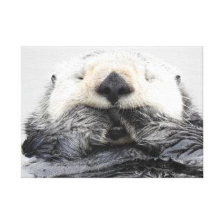 Sea Otter Sleeping Leinwanddruck