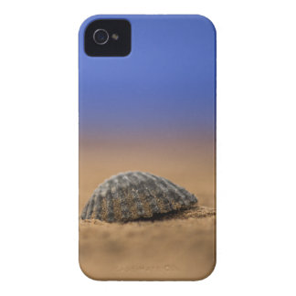 Seashell Case-Mate iPhone 4 Hülle