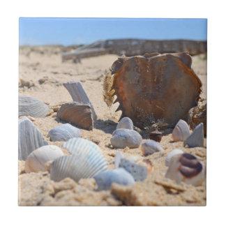 Seashells auf dem Strand durch Shirley Taylor Keramikfliese