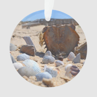 Seashells auf dem Strand durch Shirley Taylor Ornament