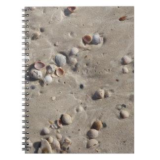 Seashells im nassen Sand Spiral Notizblock