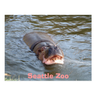 Seattle-Zoo Postkarte