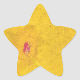 Secondaire Sticker En Étoile