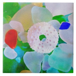Seeglas-und Seeigel-Muschel Keramikfliese