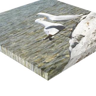 Seemöven auf einem Felsen durch Michigansee Leinwanddruck