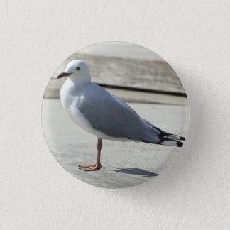 Seemöwe-Abzeichen Runder Button 2,5 Cm