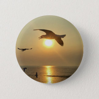 Seemöwe am Sonnenuntergang Runder Button 5,1 Cm