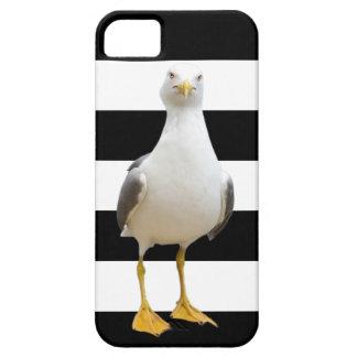 Seemöwe auf einem gestreiften Hintergrund - iPhone Schutzhülle Fürs iPhone 5