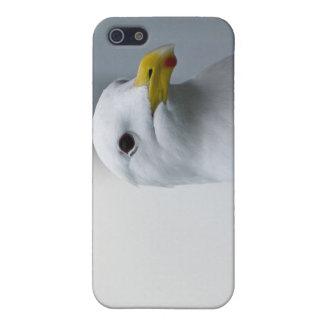 Seemöwe-Bedarfs-Liebe auch iPhone 5 Schutzhülle