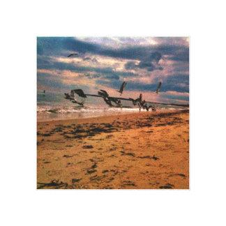 Seemöwe-Strand Leinwand Drucke