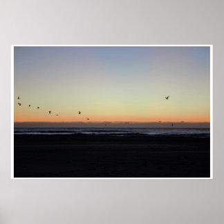 Seemöwen, die über Ozean am Sonnenaufgang fliegen Poster