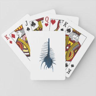 SeeMuschel Spielkarten