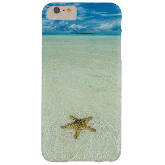 Seestern im seichten Wasser, Palau Barely There iPhone 6 Plus Hülle
