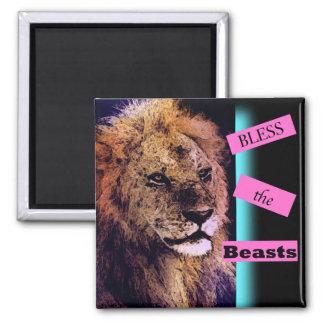 Segnen Sie den Tier-Löwe-Magneten Quadratischer Magnet