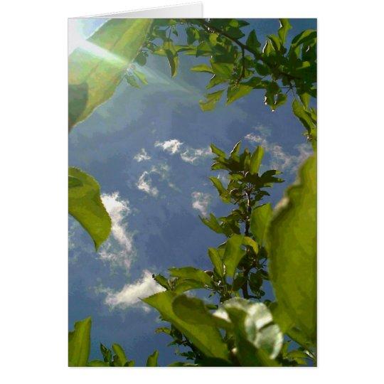 Sehen Sie vom Apfelbaum an Mitteilungskarte