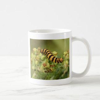 sehr hungrige Raupe Kaffeetasse