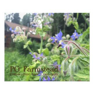 SEITE Farmstead-Flyer