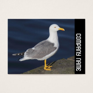 Seitenband - Gelb-Mit Beinen versehene Möve Visitenkarte