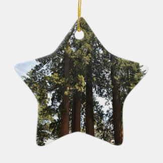Sequioa Nationalpark Keramik Ornament