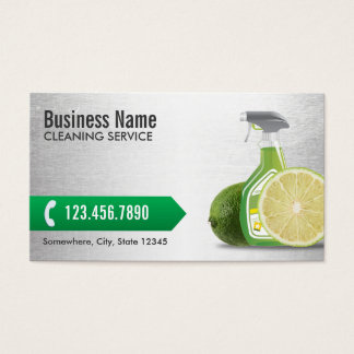 Service naturel argenté moderne de nettoyage cartes de visite