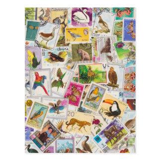 Setzen Sie Briefmarke hier Postkarte