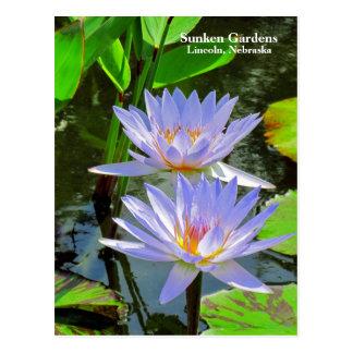 Sg-Paare Lilien des BLAUEN Wassers #100 00100 Postkarte