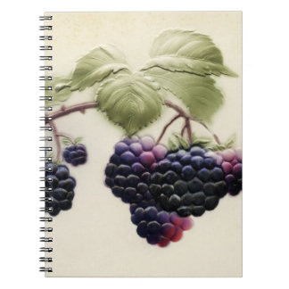 Shab-tastic Vintages BlackBerry-Notizbuch Notizblock