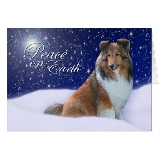 Sheltie Friedensweihnachtskarte Karte