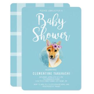 Shiba Inu mit Baby-Duschen-Blau der Karte