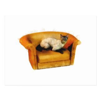 Siamesische Couch-Katze Postkarte