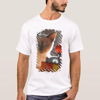 Siamesisches Kätzchen T-Shirt