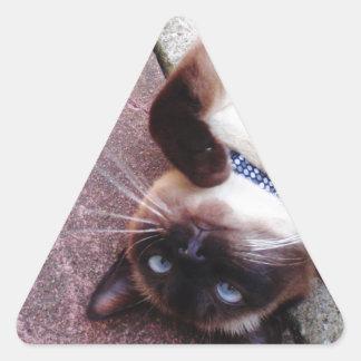 Siamois espiègle sticker triangulaire