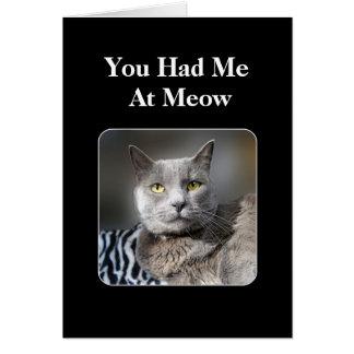 Sie hatten mich an der Meow-russischen blauen Karte
